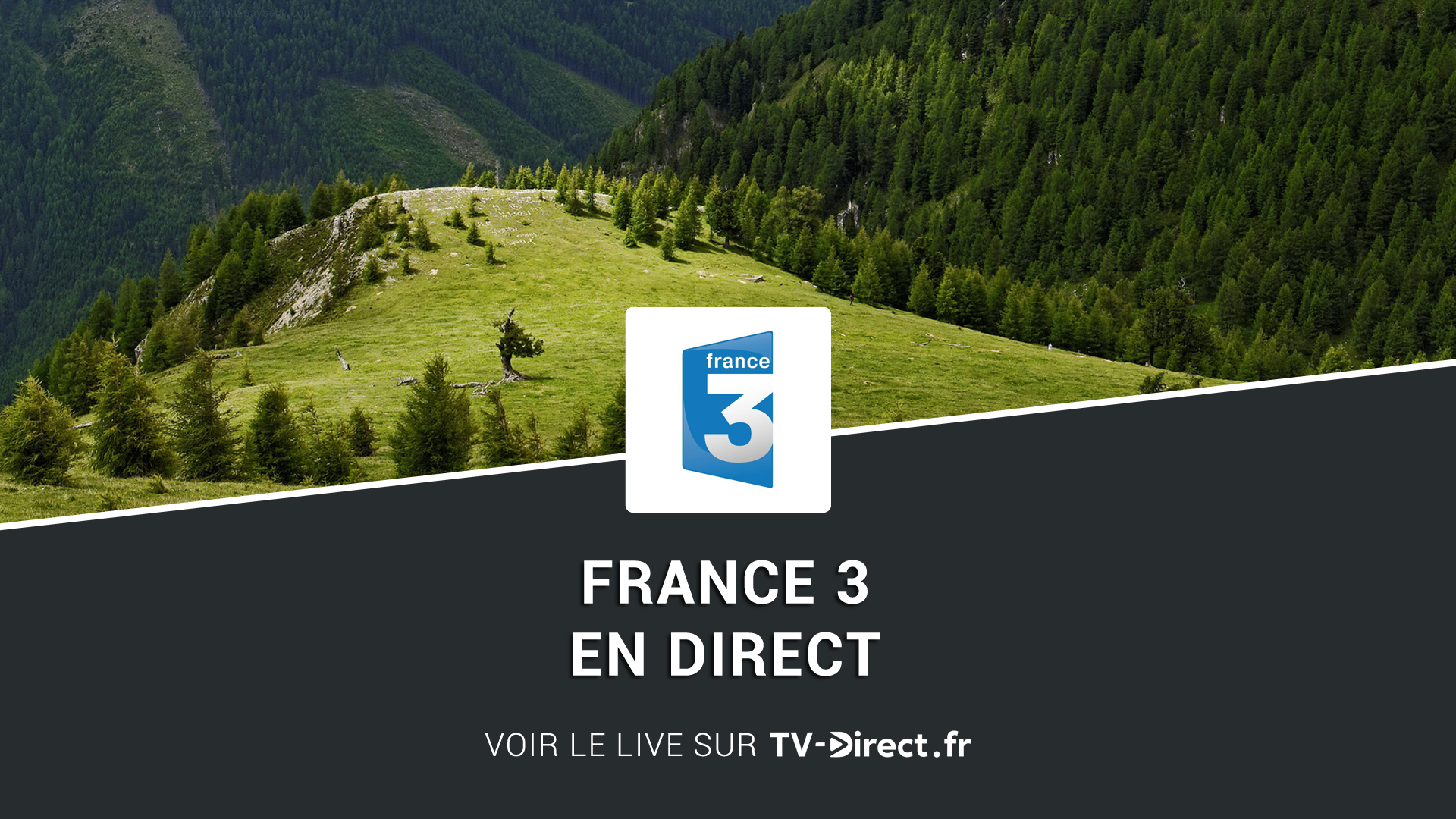 france 3 direct regarder france 3 en direct live sur internet. Black Bedroom Furniture Sets. Home Design Ideas