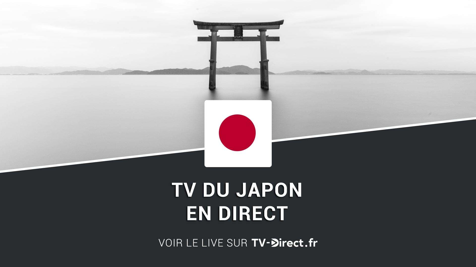 japon tv en direct sur internet tv japonaise en live. Black Bedroom Furniture Sets. Home Design Ideas