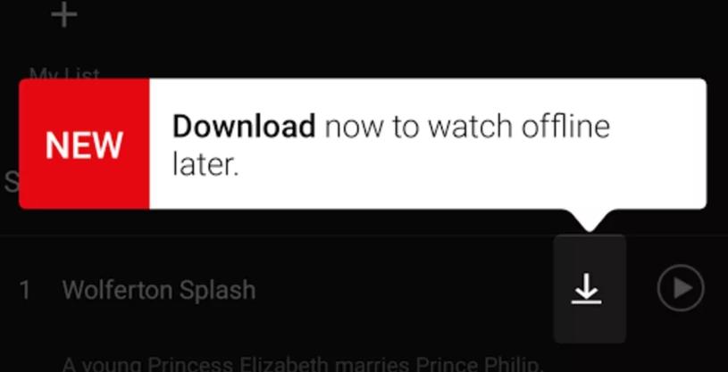 Téléchargement streaming Netflix